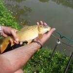 Fishing at Highway Farm