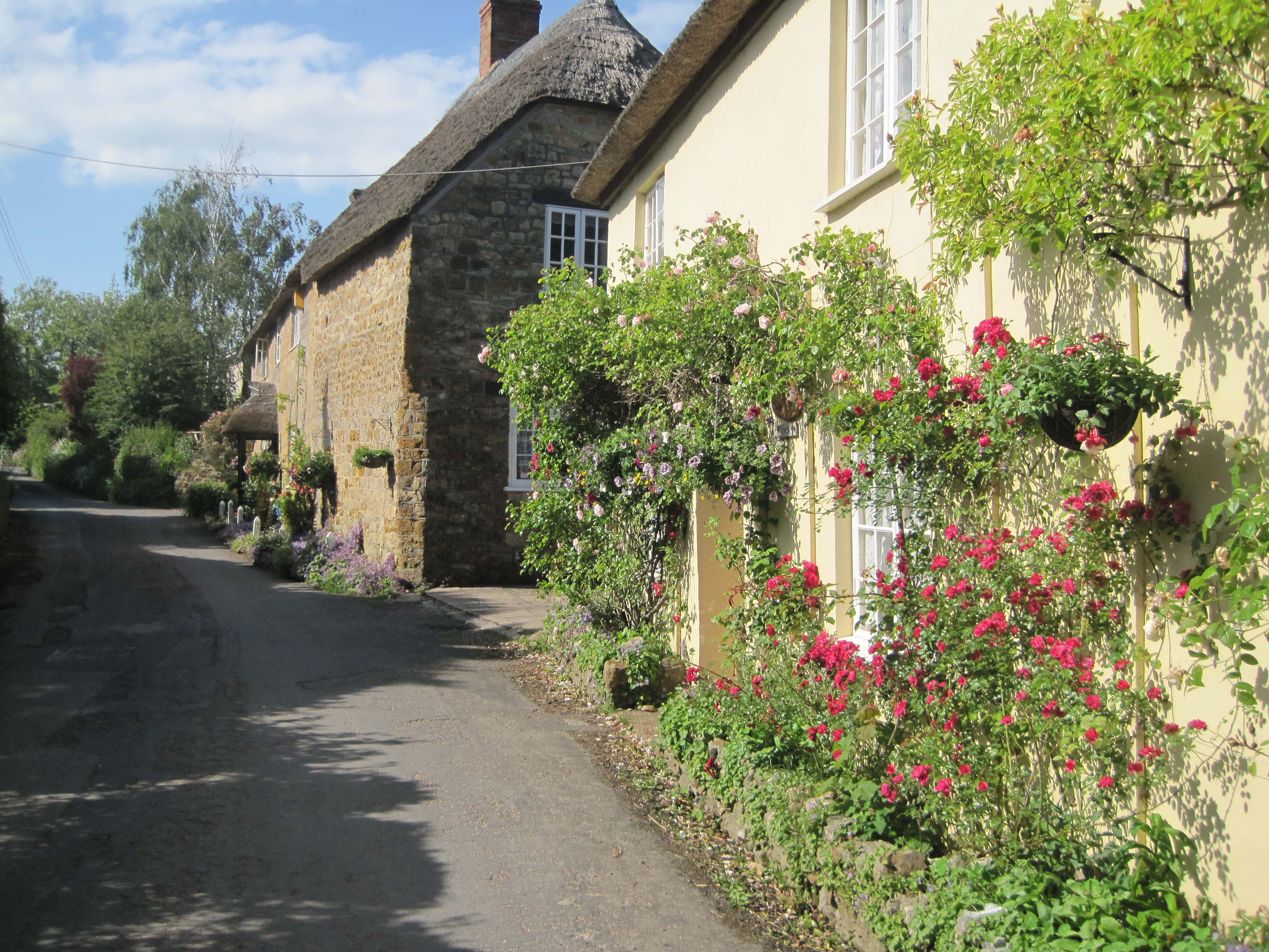 How much does it cost to insure a thatched cottage