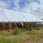 Taddle Farm Tents